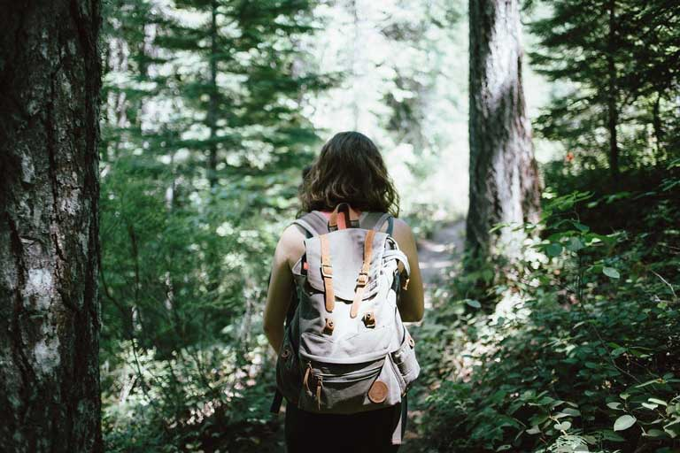 Woman trekking in the forest